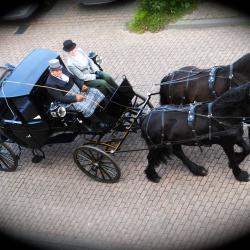 Glaslandeauer, getrokken door Friese paarden.